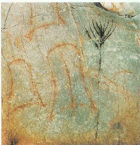 Vulva's. Grot van El Castillo. Santander in Noord-Spanje. Ca 15.000 v. Chr.