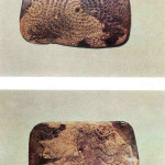 Oudst bekende spiraal. Plakkette uit Mal'ta in Siberië. 26.000 v. Chr.  voor- en achterzijde.