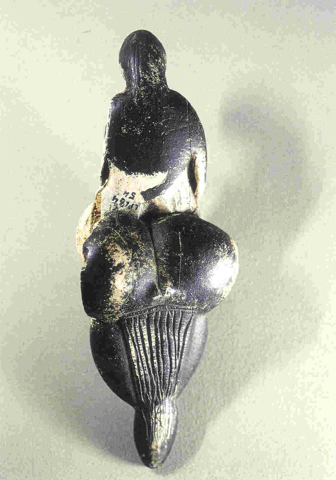 Venus van Lespugue. Achterkant. Uit de grot van Rideau, Haute-Garonne, Frankrijk 14,7 cm. Zwarte mammoettand. Thans in Musée des Antiquités Nationales, Saint-Germain-en-Laye.