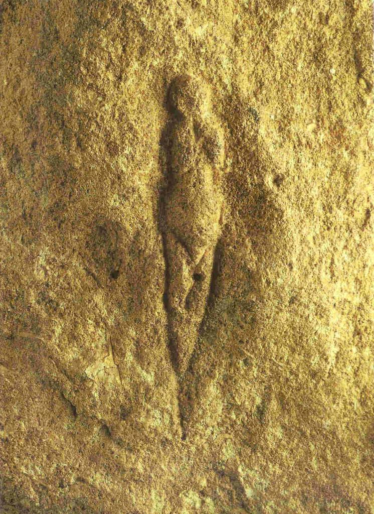 Venus van het abri Pataud. Les Eyzies-de-Tayac, Dordogne. 21.000 v. Chr. 5.8 cm. In 1958 ontdekt. Bevindt zich in Musée de 'l Homme in Parijs.