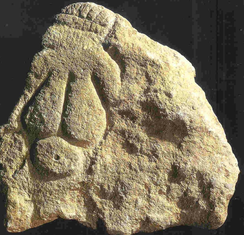 Venus met de ruit. Laussel. Bas-reliëf van 30-37.5 cm. 23.000-20.000 v. Chr. Linkerhand is geheven. Hoofdtooi.